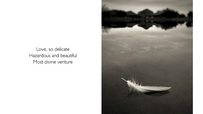 Mobile photography and haiku